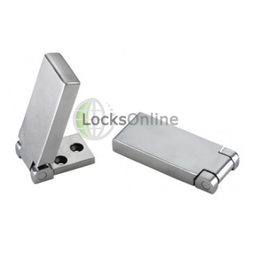 Main photo of Flush Tall Hinges in Stainless Steel, Grade 316