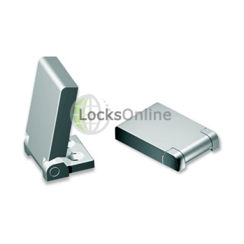 Flush Tall Hinges in Stainless Steel, Grade 316