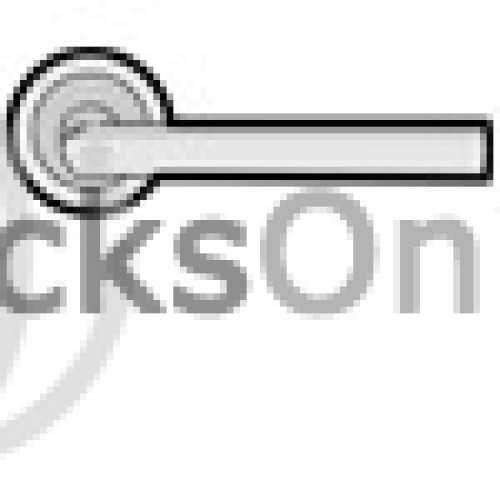 Main photo of Karcher Lignano Steel Door Handle